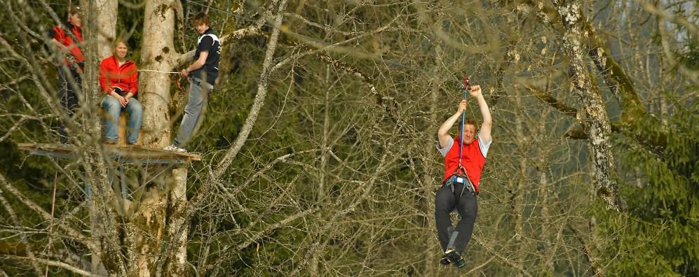 Flying Fox: insgesamt 800 Meter von Baum zu Baum
